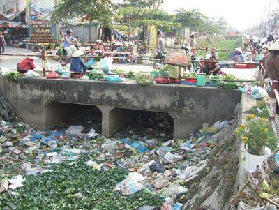 túi ni lông, ô nhiễm môi trường, túi môi trường, bảo vệ môi trường