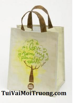 túi quà tặng, túi vải xanh, túi không dệt, bảo vệ môi trường